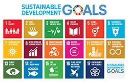 SDG goals