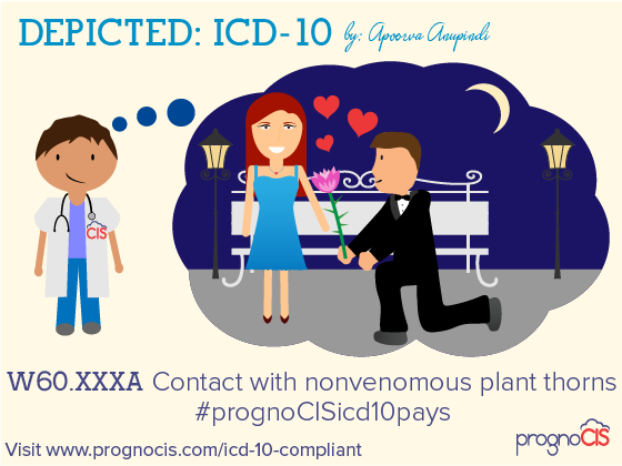 ICD-10: Contact with nonvenomous plant thorns