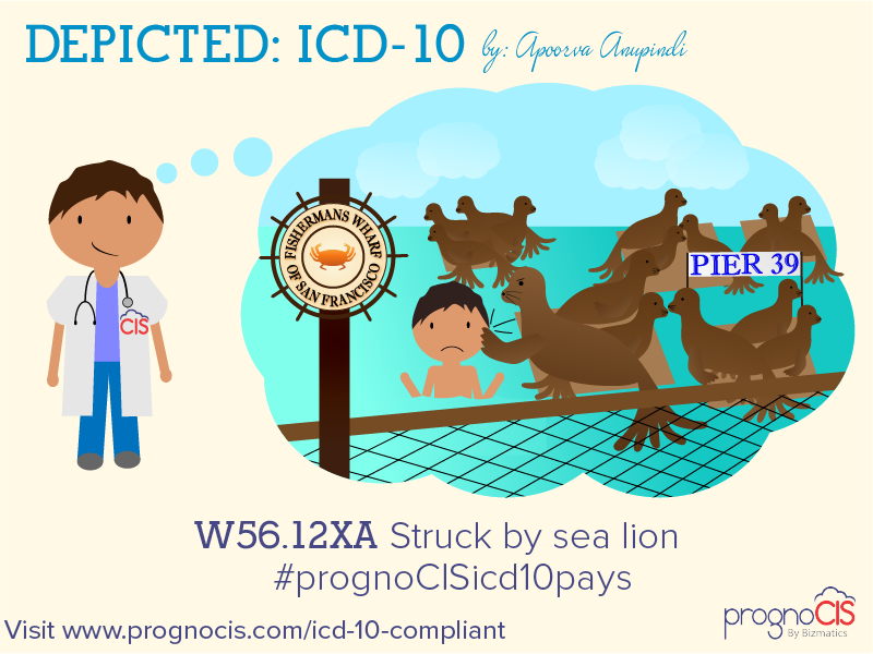ICD-10: Struck by sea lion