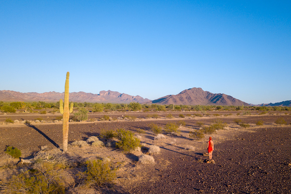 Photo: woman in desert with saguaro by roxanne darling