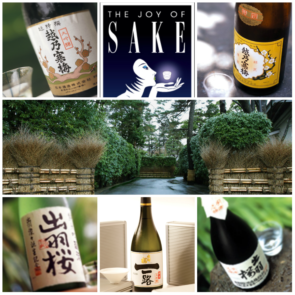 2014 Joy of Sake Gold Award Winners Sake Tasting