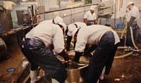 Koshi no Kanbai Workers