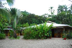 Tropenstation La Gamba | Costa Rica