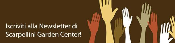Iscriviti alla Newsletter di Scarpellini Garden Center!