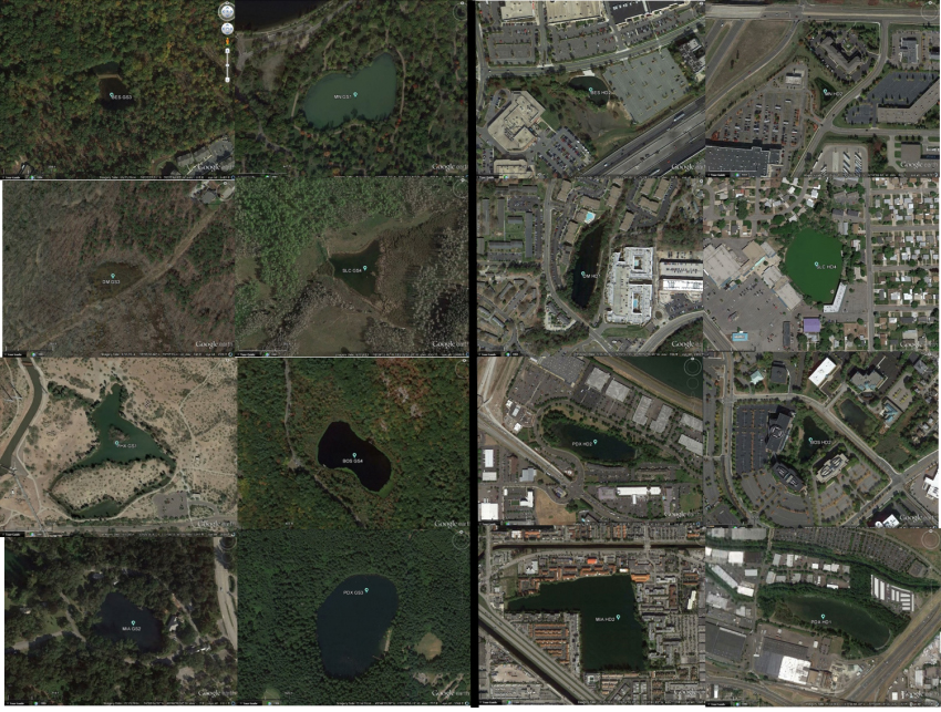 Google Earth Images of Stormwater Ponds