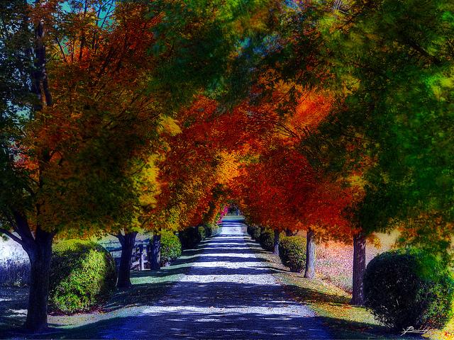 Podzim ve znamení OPŽP