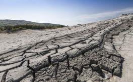 Dotace na zmírnění škod způsobených suchem