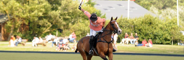 Derby Polo Tente d'Or