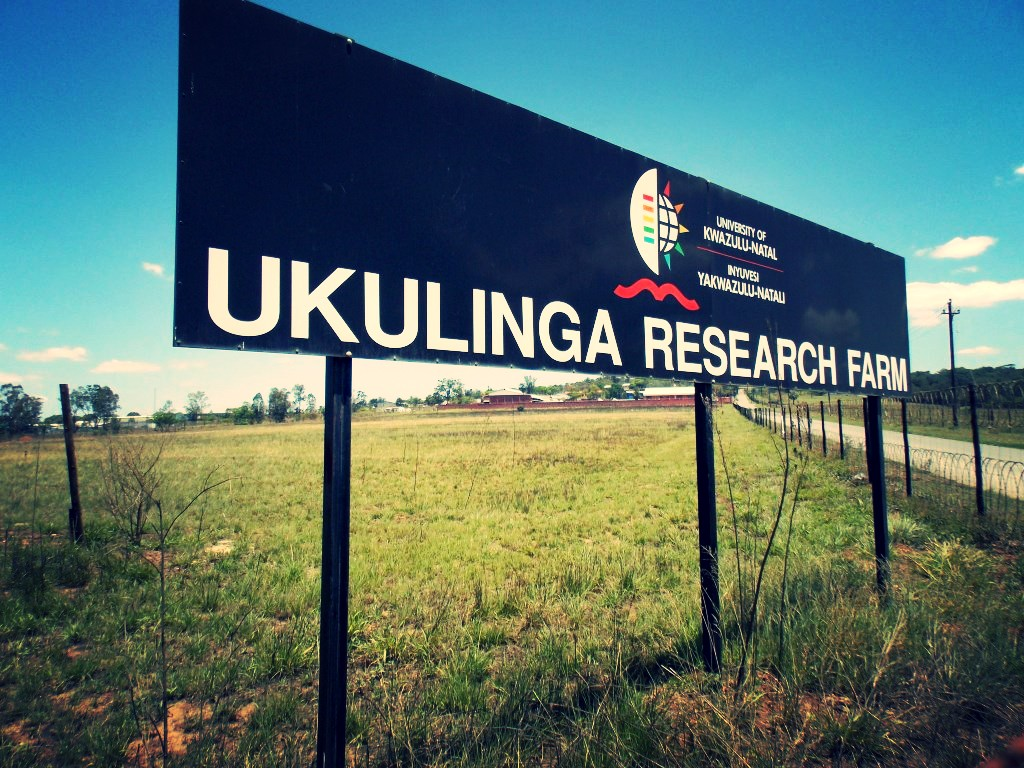 Ukulinga sign