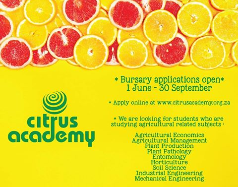 Citrus Academy bursaries