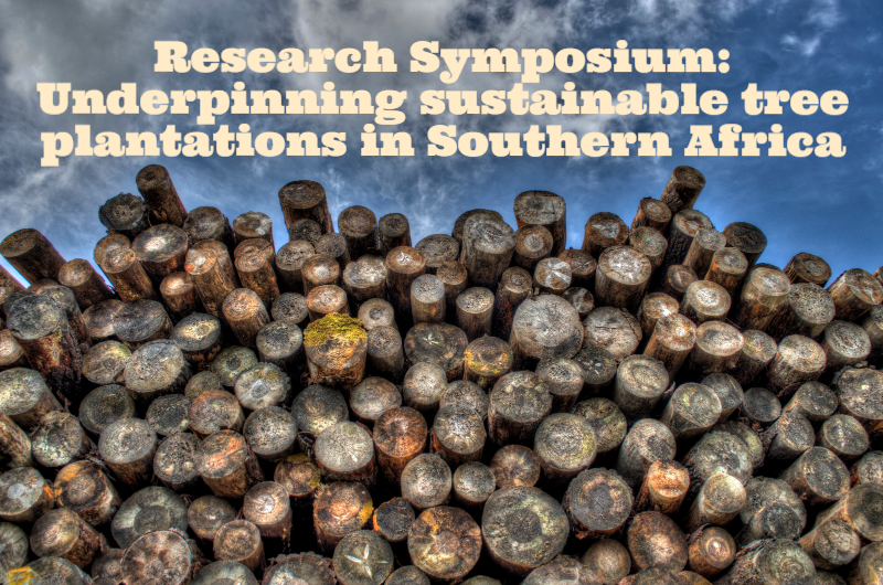Research Symposium image