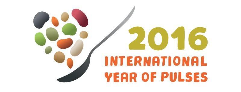 IYP logo