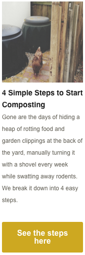 4 Simple Steps to Start Composting