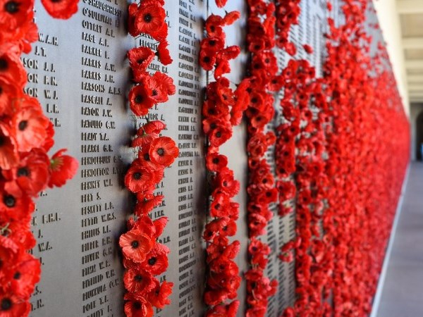 memorial plaque wall with names and poppies