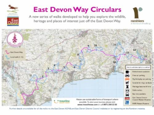 New circular walks leading off the East Devon Way