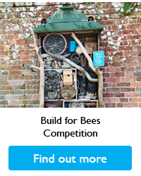 Build for Bees Competition