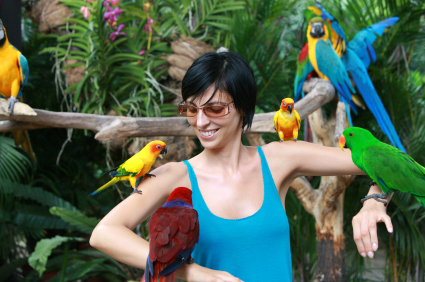 Woman with Multiple Parrots on both arms
