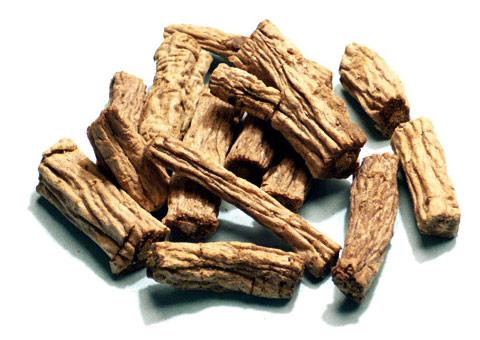 Codonopsis pilosula root