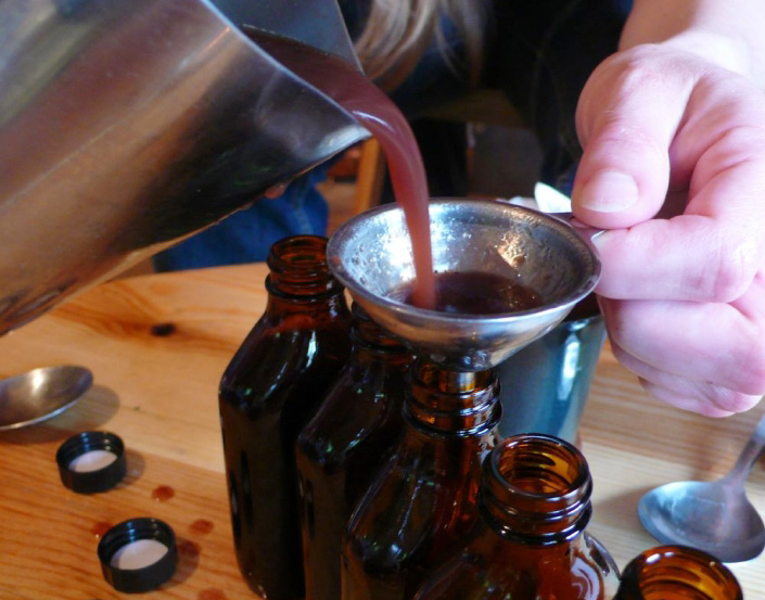 The Budding Herbalist Series: Medicine Making 101