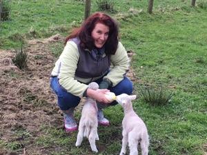 Lisa feeding lambs
