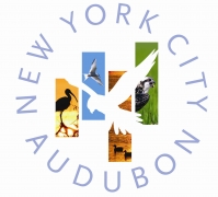 NYC Audubon Celebrates 30 Years of Conservation