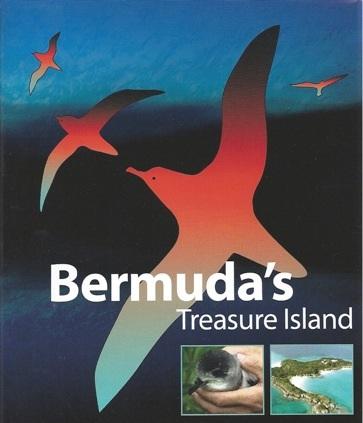 Bermuda's Treasure Island was released in 2005