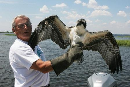 Don Riepe has been Jamaica Bay Guardian for the last 6 years. Photo © Gordon Lam