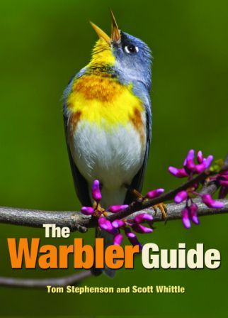 The Warbler Guide © Princeton University Press