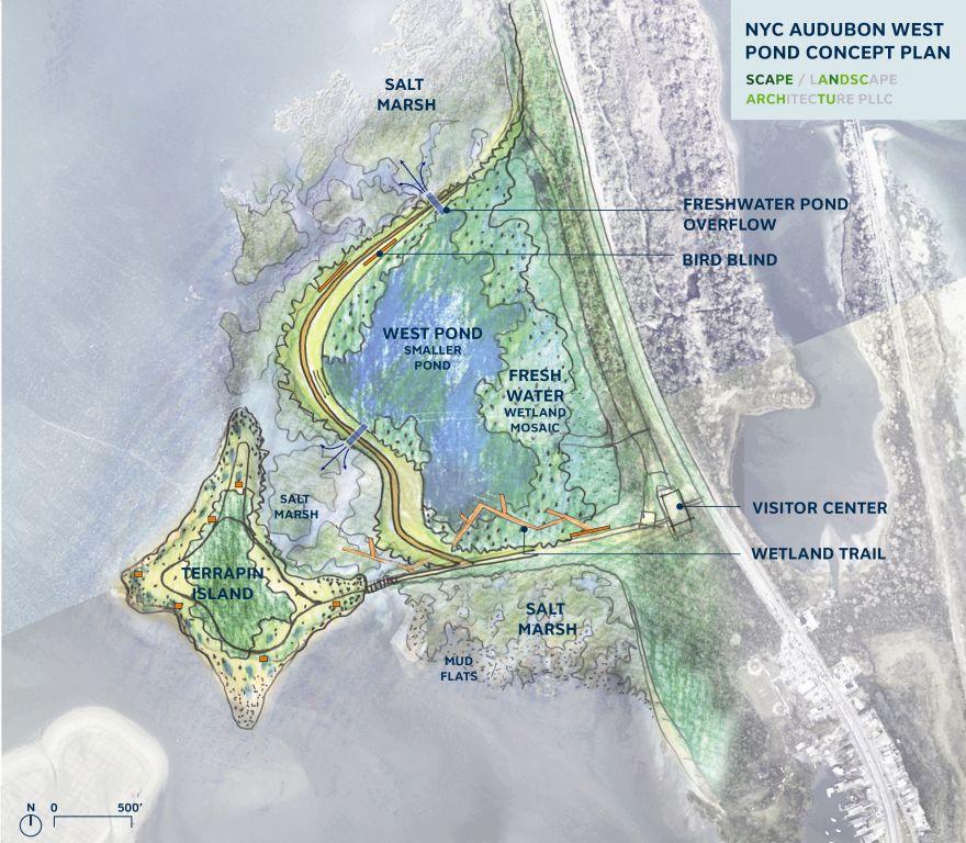 NYC Audubon West Pond Concept Plan © SCAPE/ Landcape Architecture PLLC