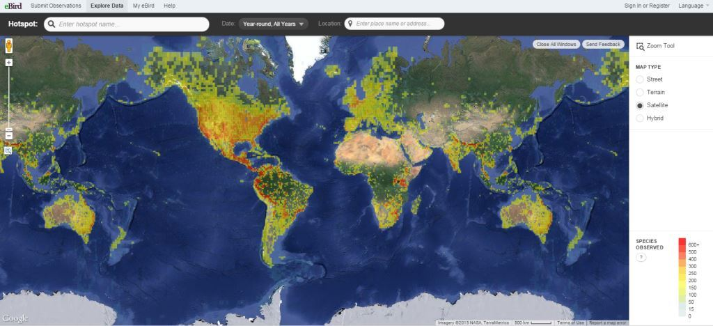eBird World Map