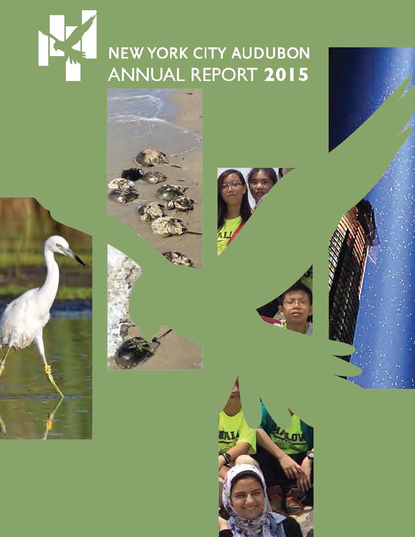 New York City Audubon Annual Report 2015 (cover)
