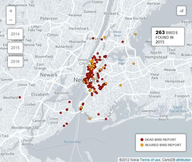 D-Bird Data Map, 2015