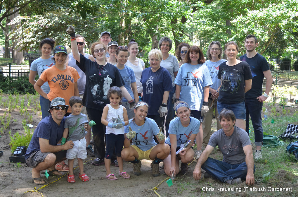 McGolrick Park Urban Oasis Native Garden Plating, June 2014 © Chris Kreusssling (Flatbush Gardener)