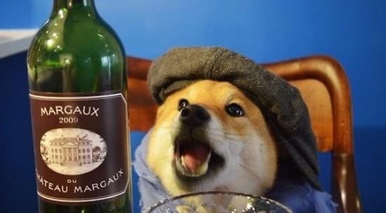 Wine Doggo
