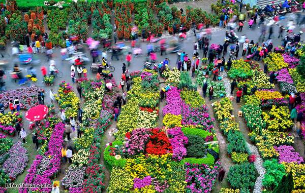 Flower Market Fair