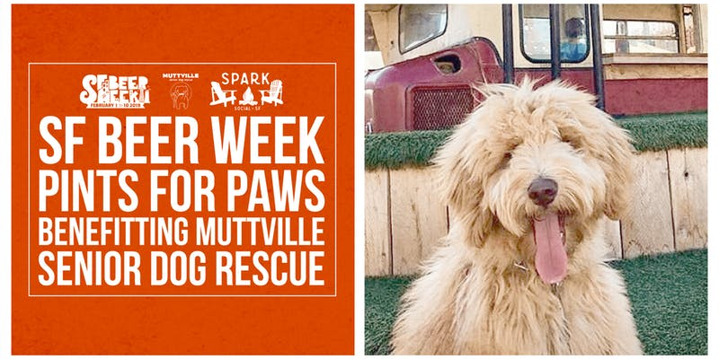 SF Beer Week Pints For Paws! Benefitting Muttville Senior Dog Rescue