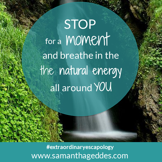 STOP for a moment and breathe in the natural energy all around you