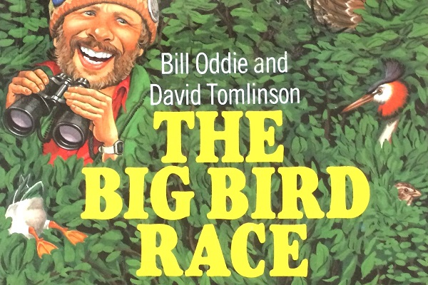 The Big Bird Race book by Bill Oddie and David Tomlinson