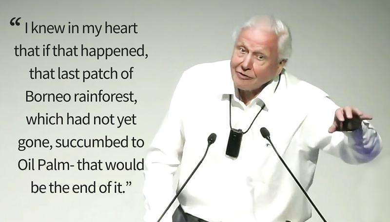 Sir David Attenborough speaking at the Earth Optimism event, Cambridge © H Turner