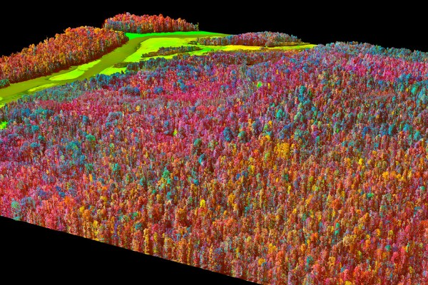 Maps created by the Carnegie Aerial Observatory. © Greg Asner, Carnegie Institution for Science.