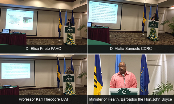 Photos from PAHO Workshop