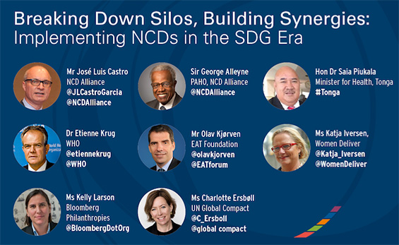 Breaking Down Siloes, Building Synergies: Implementing NCDs in the SDG Era
