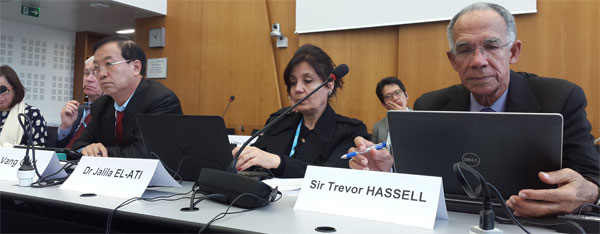 WHO GCM/NCD Working Group