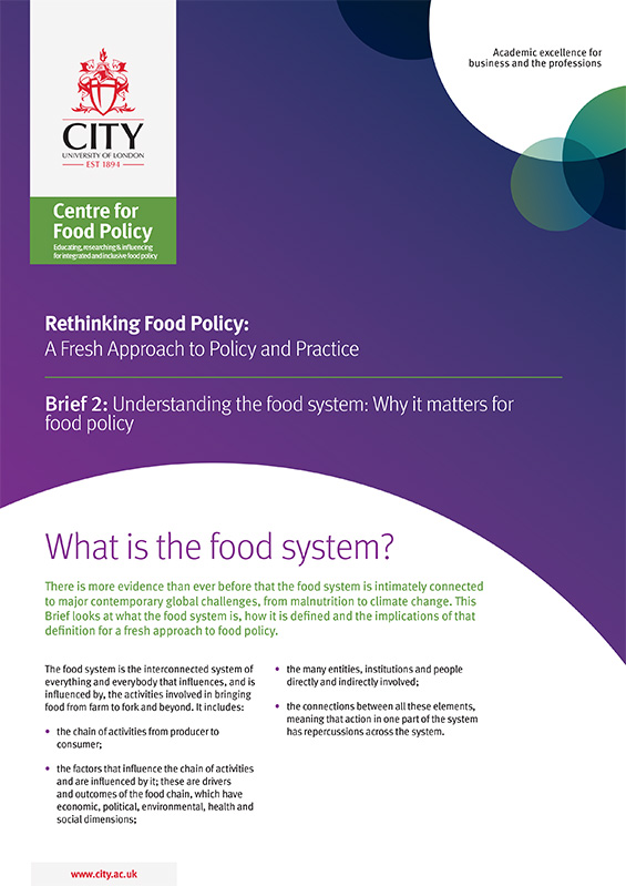 Understanding the food system: Why it matters for food policy