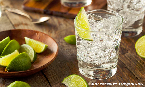 Gin and tonic with lime. Photograph: Alamy