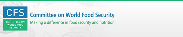 UN Standing Committee on Nutrition & CFS