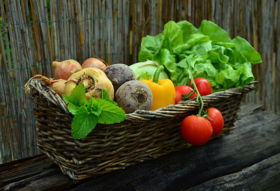Bermuda Health Council Launch 'Fresh Food Fridays'