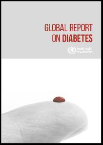 Global Report on Diabetes