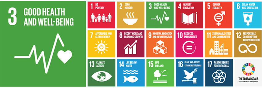A New Sustainable Health Agenda for the Americas Nears Completion