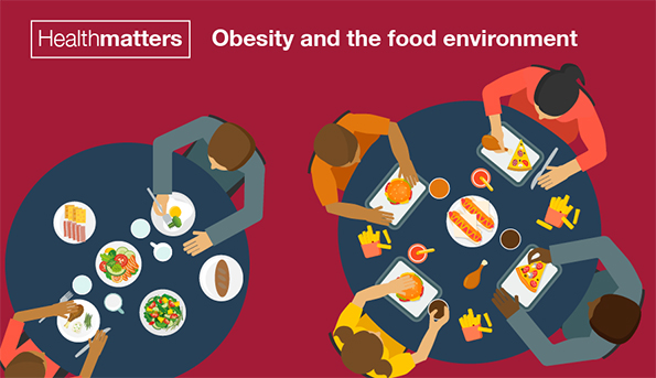 Obesity and the Food Environmen